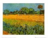 Vista de Arles con lirios Póster por Vincent van Gogh