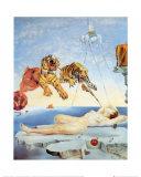 Sogno causato dal volo di un'ape intorno a una melagrana un attimo prima del risveglio, circa 1944 Stampa di Salvador Dalí