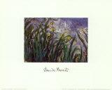 Iris Jaune et Mauves, 1924-25 Pôsters por Claude Monet