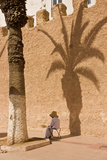 A Woman Sits in the Shade of a Palm Tree on a Street in Marrakech Photographic Print by Cristina Mittermeier