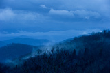 Pre-dawn Light Casts a Blue Hue Over Forested Mountains and Clouds Reproduction photographique par Amy & Al White & Petteway