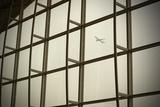 Airplane Flying Out of Hong Kong International Airport Fotografisk tryk af John Burcham