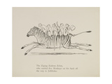 Monkeys Riding a Zebra, Nonsense Botany Animals and Other Poems Written and Drawn by Edward Lear Giclée-tryk af Lear, Edward