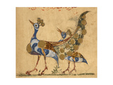 Two Peacocks Giclée-tryk af Aristotle ibn Bakhtishu