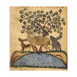 Deer-type, Rabbit and Fox, Standing Over Water Lámina giclée por Aristotle ibn Bakhtishu