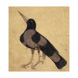 Raven Giclée-tryk af Aristotle ibn Bakhtishu