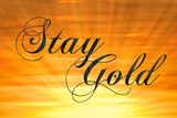 Stay Gold Ponyboy Posters