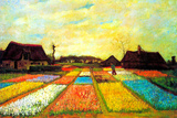 Vincent van Gogh Holland Flower Bed Print by Vincent van Gogh