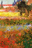 Vincent van Gogh Flowering Garden 高品質プリント : フィンセント・ファン・ゴッホ