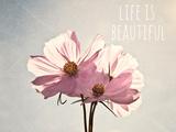 Life Is Beautiful Fotografie-Druck von Susannah Tucker