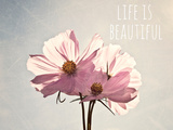 Life Is Beautiful Photographic Print by Susannah Tucker