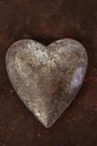 Silver Heart Fotografisk trykk av Den Reader