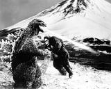King Kong vs. Godzilla 写真