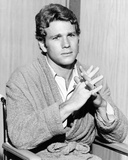 Ryan O'Neal - Peyton Place Photo