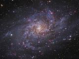 Messier 33, Spiral Galaxy in Triangulum Fotografie-Druck von Stocktrek Images