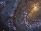 Close-up of the Southern Pinwheel Galaxy Photographic Print by Stocktrek Images