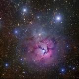 The Trifid Nebula Located in Sagittarius Fotografie-Druck von Stocktrek Images