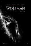 The Wolman (Benecio Del Toro, Anthony Hopkins, Emily Blunt) Movie Poster Poster