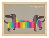 Mod Rainbow Dogs Plakat af  Anderson Design Group