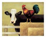 Kuh auf dem Bauernhof Poster von Lowell Herrero