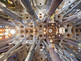 Spain, Barcelona, Sagrada Familia, Interior Fotografie-Druck von Steve Vidler