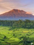 Indonesia, Bali, Redang, View of Rice Terraces and Gunung Agung Volcano Fotografisk trykk av Michele Falzone
