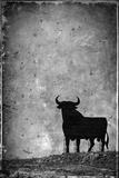 Spain, Andalucia, Jerez De la Frontera, El Cuadrejon, An Osborne Bull or Toro De Osborne Fotografisk tryk af Alan Copson