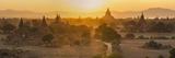 Ancient Temple City of Bagan (Also Pagan) and Ox Cart, Myanmar (Burma) Reproduction photographique par Peter Adams