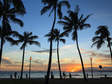 USA, Hawaii, Oahu, Honolulu, Waikiki Beach, Kapiolani Park 写真プリント : ミーケイレイ・フォールゾーン
