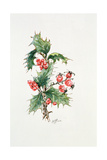 Holly and Rosehips Giclee Print by Nell Hill