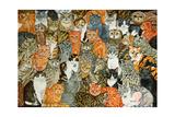 The Owls and the Pussycats Reproduction procédé giclée par  Ditz