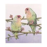 Love Birds Giclee Print by Pat Scott