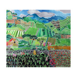 Cabbages and Lilies, Solola Region, Guatemala, 1993 Giclee Print by Hilary Simon