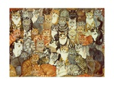 Cat-Spread Giclee-trykk av  Ditz
