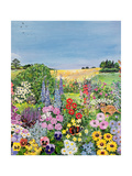 Summer from the Four Seasons (One of a Set of Four) Giclee Print by Hilary Jones