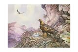 Golden Eagles at their Eyrie Reproduction procédé giclée par Carl Donner