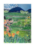 Lovina Ricefields with Lilies and Frangipani, Bali, 1996 Giclee Print by Hilary Simon