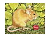 The Raspberry-Mouse Lámina giclée por  Ditz