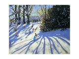 Early Snow, Darley Park Giclee Print by Andrew Macara