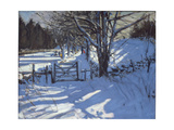 Gate Near Youlgreave, Derbyshire Giclee Print by Andrew Macara