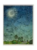 Zodiac Sky Giclee Print by Wayne Anderson