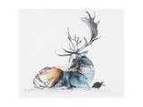 Buck and Bird, 2006 Giclee Print by Mark Adlington