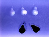 Blue Pears (After Wm. Scott) 2005 Photographic Print by Norman Hollands