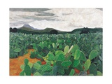Patch of Prickly Pears on the Way to Tulancingo (Cloudy Sky) 2004 Giclee Print by Pedro Diego Alvarado