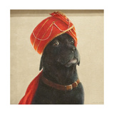 Reluctant Maharaja, 2010 Giclee Print by Lincoln Seligman