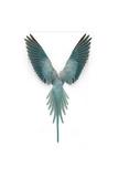 Blue Ringneck Parrot Lámina fotográfica por Christopher Marley