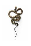 Cobra Fotografie-Druck von Christopher Marley