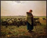 Shepherdess with Her Flock, 1863 額入りキャンバスプリント : ジャン=フランソワ・ミレー