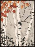 Birch Tapestry Framed Canvas Print by Melissa Pluch