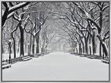 Central Park no inverno Impressão em tela emoldurada por Rudy Sulgan